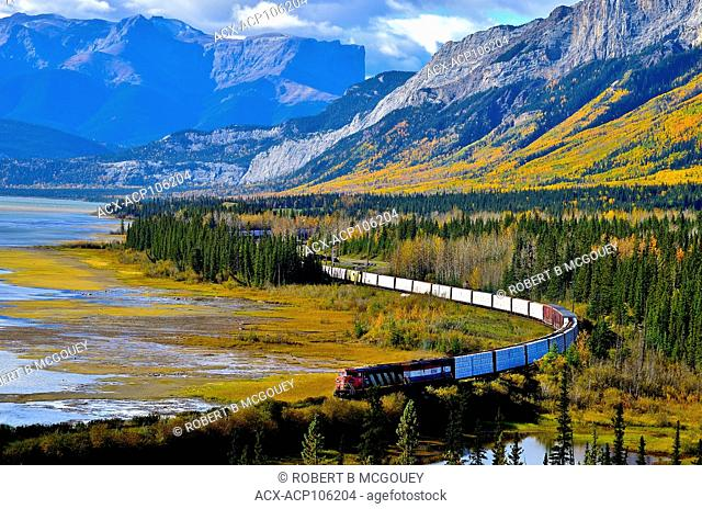 A Canadian National Railway freight train traveling through the rocky mountains near Brule, Alberta, Canada