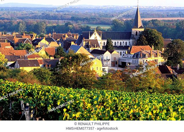 France, Nievre, Pouilly on Loire, the Village from the vineyard, Loire river in the Background