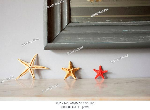 Three starfish on mantelpiece