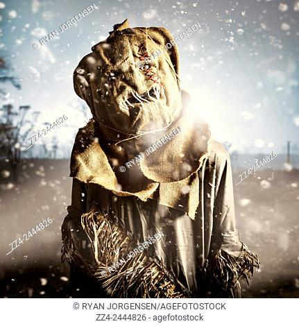 Evil scarecrow standing in the pouring rain on a dark farmyard field. Return of mildew