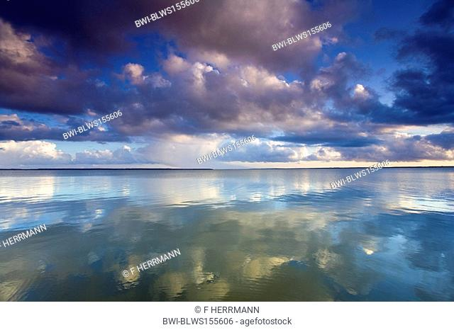 Bodden with cloud reflections in evening sun, Germany, Mecklenburg-Western Pomerania, Wustrow