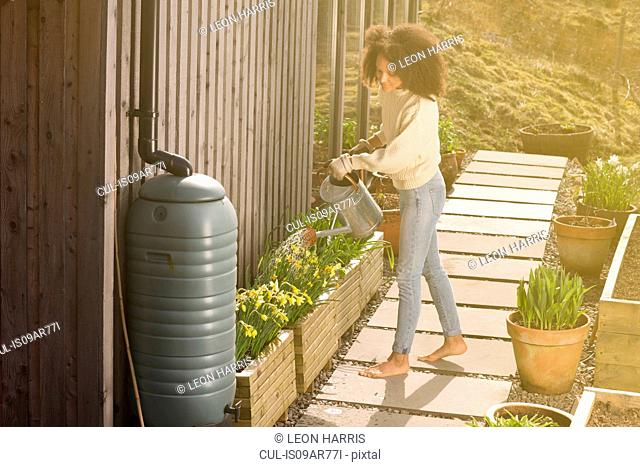 Mid adult woman using watering can