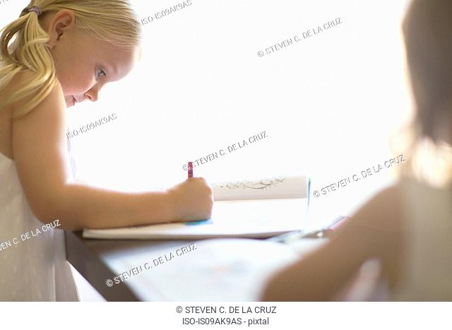 Two sisters coloring in books with crayons