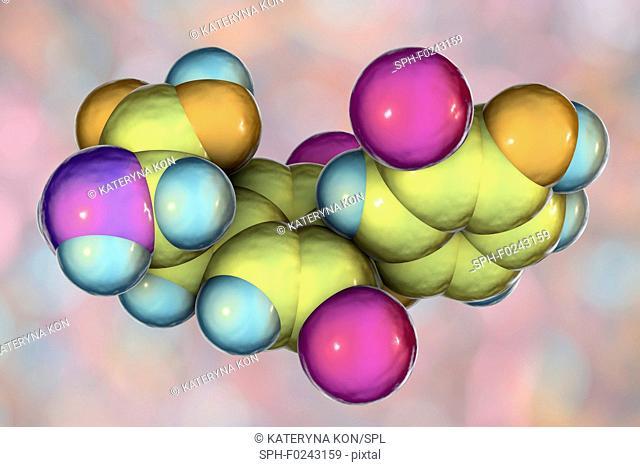 Triiodothyronine hormone, molecular model