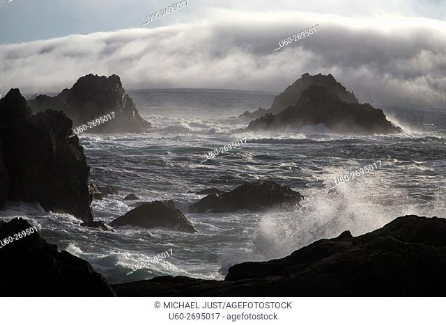 The rocky coastline at Point Lobos State Natural Reserve in Carmel, California