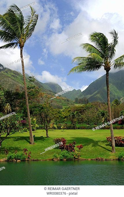 Maui Tropical Plantation with West Maui mountains portrait