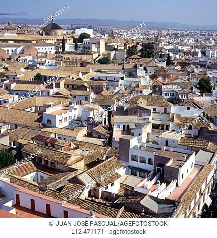 Juderia (Jewish quarter), Cordoba, Spain