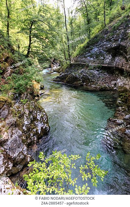 Vintgar Gorge, between Bled Lake and Bohinj Lake in Slovenia, Europe