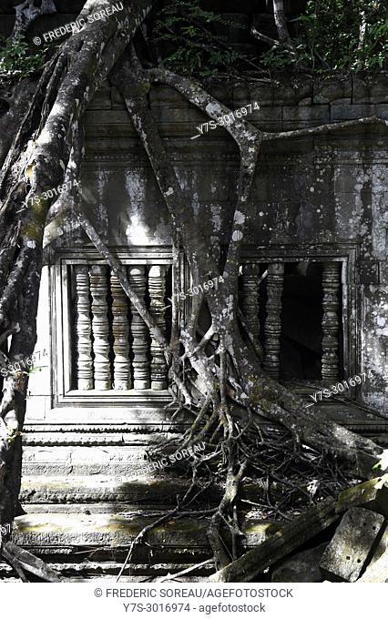Ruins of Beng Mealea, Angkor, Cambodia, South East Asia, Asia