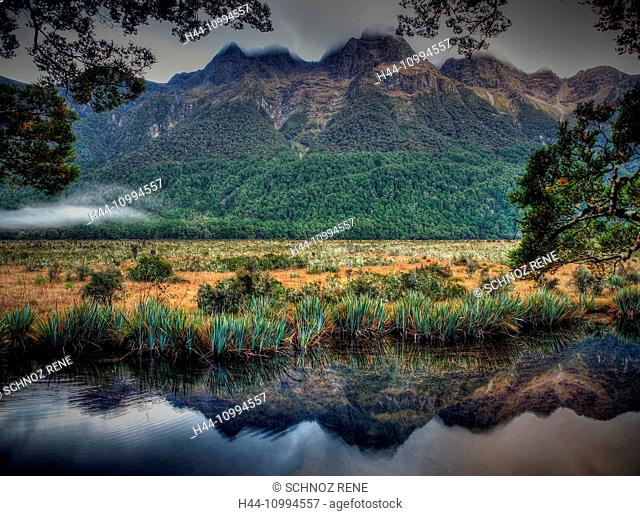 New Zealand, Mirror Lake, reflection, south island, Milford sound, nature, water, plants, rain forest, grass, lake, marsh