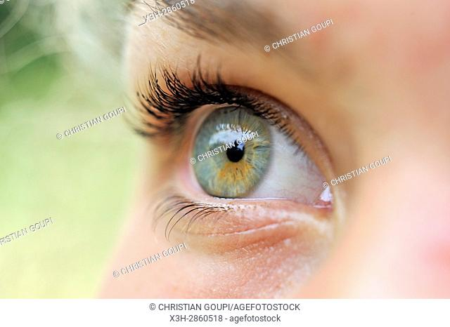 close-up of the right eye of a teenager