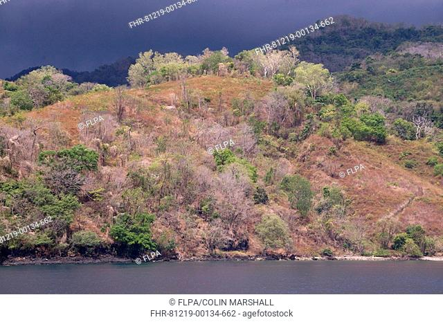 View of coastline with forested hills and rain clouds, West Wetar Island, Alor Archipelago, Lesser Sunda Islands, Indonesia