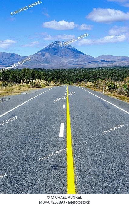 Road leading to Mount Ngauruhoe, Unesco world heritage sight Tongariro National Park, North Island, New Zealand