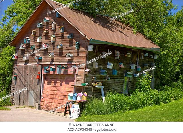 Bird houses on a shed near Stockdale, Ontario, Canada