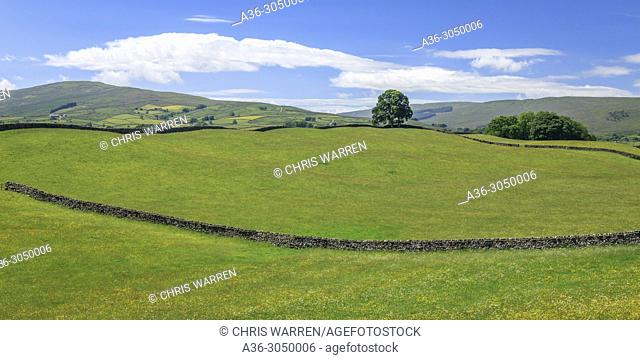 Wensleydale countryside North Yorkshire England