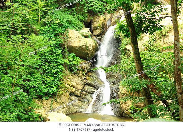 Waterfall, Henri Pittier National Park, Venezuela