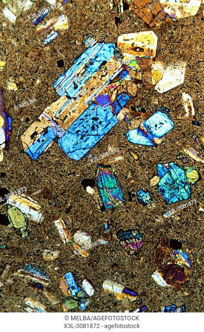 Basalt. Igneous rocks. Petrographic microscope