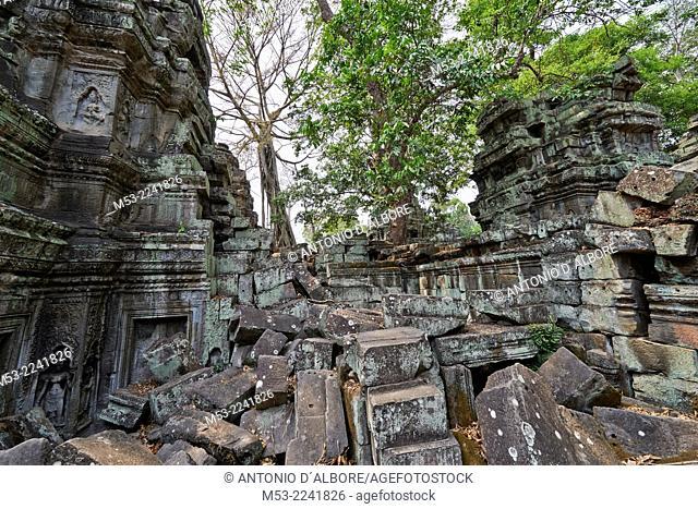 Ta Prohm ruin, a temple at Angkor. Siem Reap. Cambodia