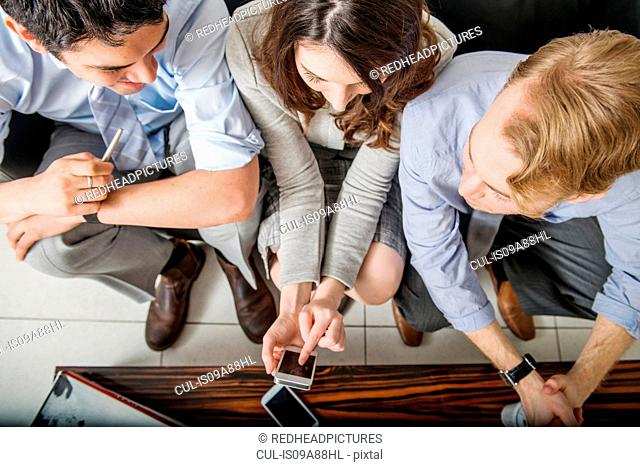 Office colleagues using cell phone, high angle