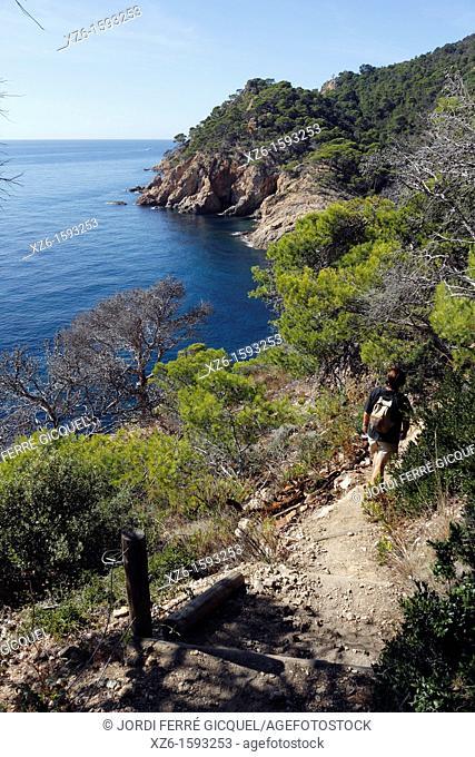 Cala Bona, Tossa de Mar, Costa Brava, Catalonia, Spain, Europe