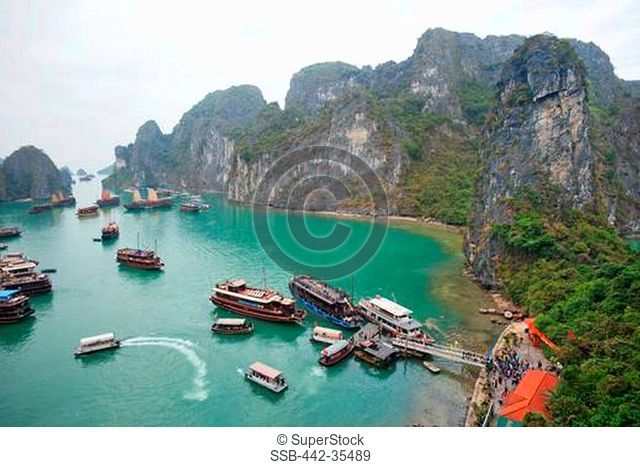 Boats in a bay, Ha Long Bay, Quang Ninh Province, Vietnam
