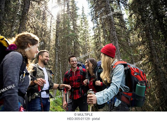 Smiling friends hiking with backpacks and hiking poles in woods