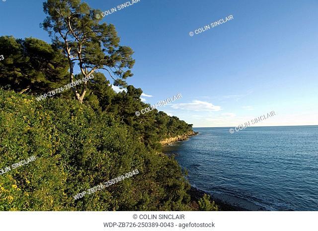 St. Jean Cap Ferrat, Cap Ferrat, End of Cap, Pine trees, Blue sky, Sea, Horizontal