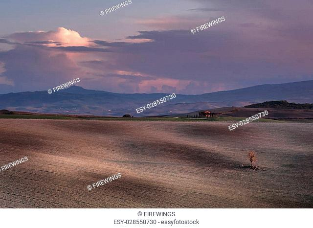 Beautiful agricaltural landscape with hills and trees, Tuscany picture