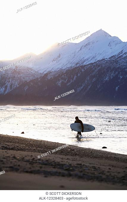 Surfer Carries His Board Out Of Kachemak Bay, Homer Spit, Southcentral Alaska, USA
