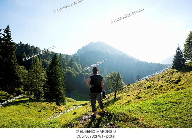 Rear view of man standing on hillside looking away, Passo Maniva, Italy