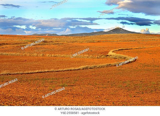 Aragon fields. Spain