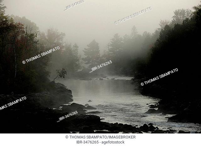 Mystical, misty morning mood, Algonquin Provincial Park, Ontario Province, Canada