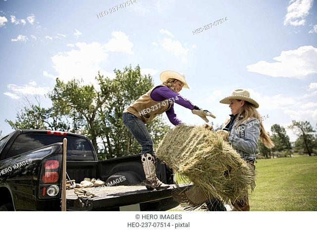 Female ranchers loading hay bales in truck bed
