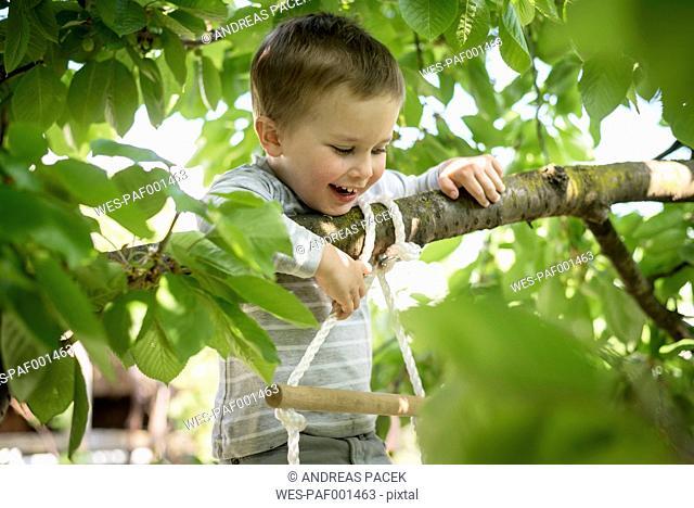 Lttle boy climbing up a rope ladder