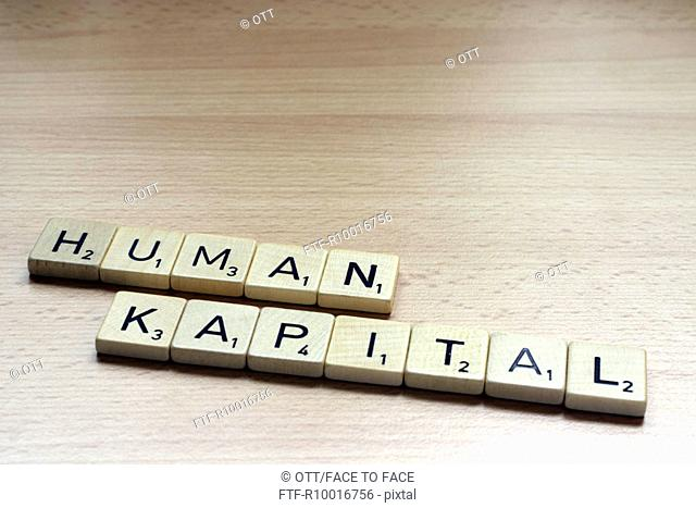 A word HUMAN KAPITAL is formed on a wooden surface