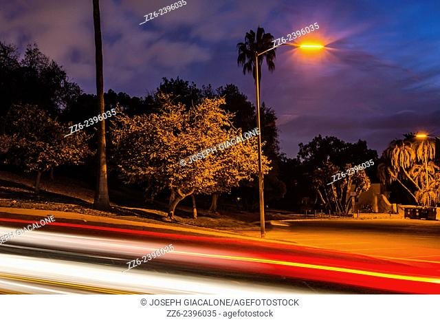 Light posts illuminating a parking lot and trees at night. Presidio Park, San Diego, California, United States