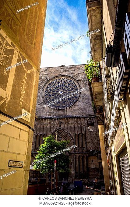 Santa Maria del Pi church in Gothic distric, Barcelona, Catalonia, Spain