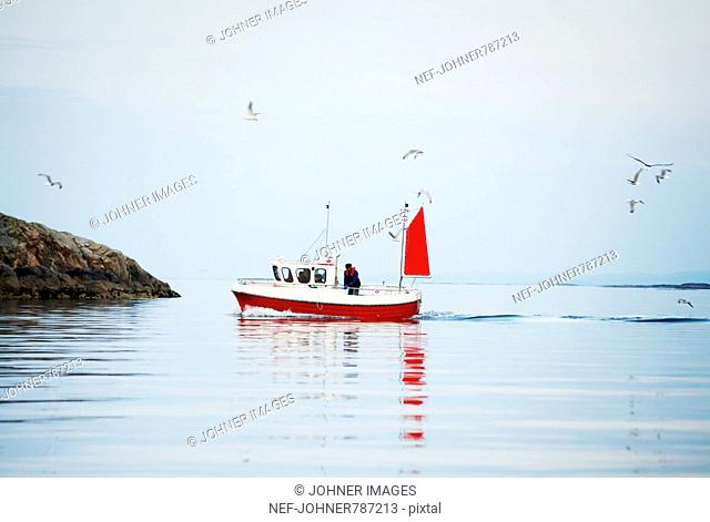 A fishing boat in the sea
