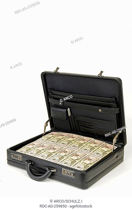 Suitcase with Dollar notes