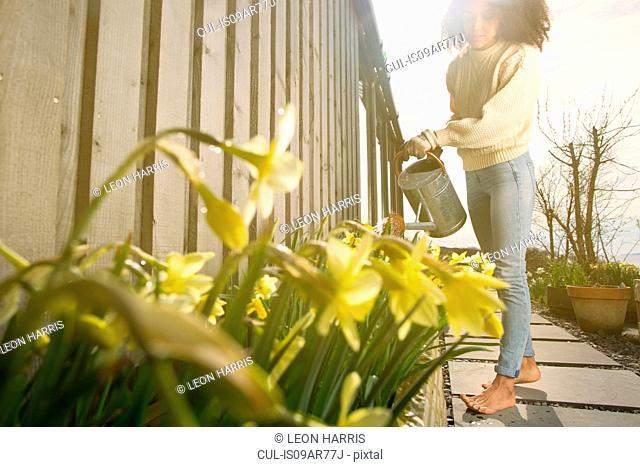 Mid adult woman watering flowers