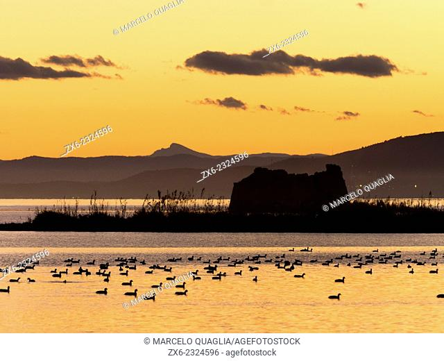 Alfacs Bay in twilight with St. John's Tower ruins and ducks. Ebro River Delta Natural Park, Tarragona province, Catalonia, Spain
