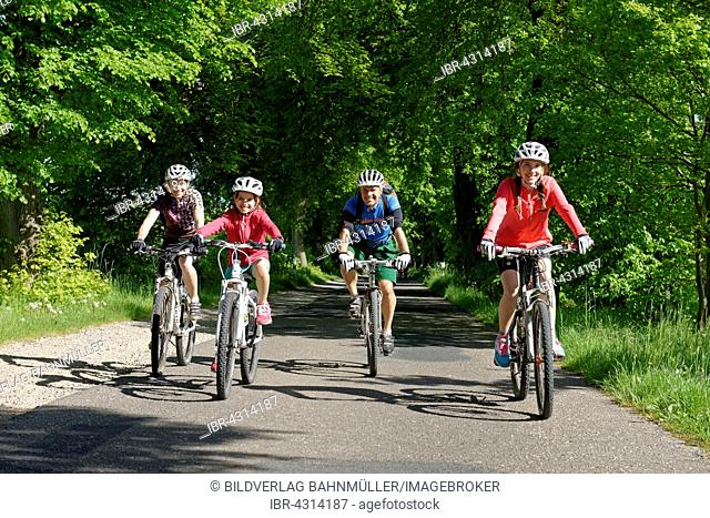 Family with children riding bicycles down avenue, Qualzow, Müritz National Park, Mecklenburg Lake District, Mecklenburg-Western Pomerania, Germany