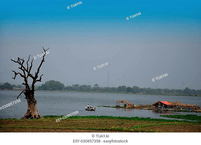 Tree died stand in Taungthaman lake at U Bein in Amarapura, Myanmar