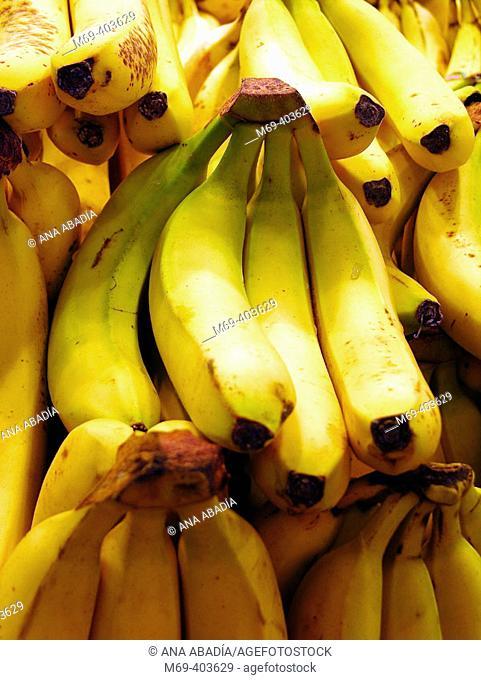 Bananas. La Boquería market. Barcelona. Spain
