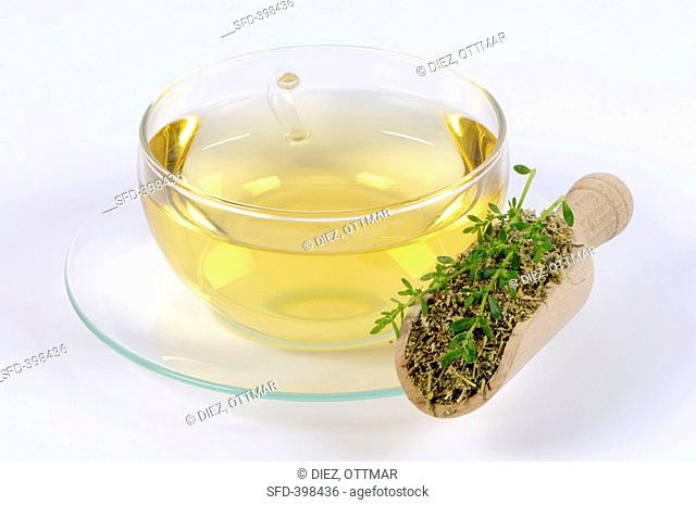 A cup of tea with rupturewort
