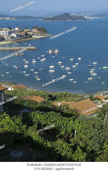 View of the Ría de Vigo. Sanxenxo, Pontevedra province, Galicia, Spain