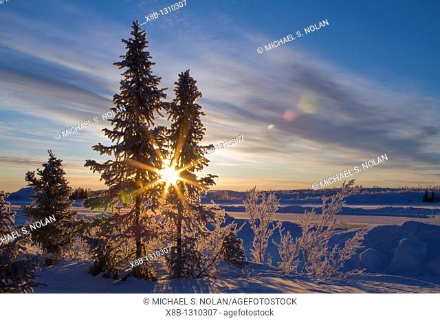Views of the boreal forest north of Yellowknife, Northwest Territories, Canada