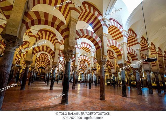 sala de oracion, Mezquita-catedral de Córdoba, Andalucia, Spain