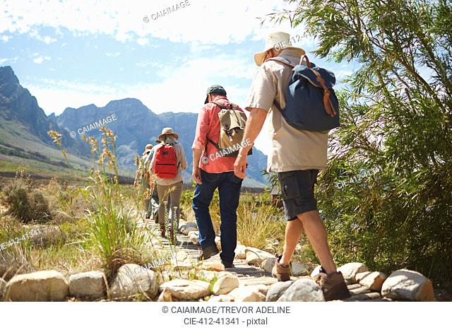Active senior friends with backpacks hiking along sunny summer footpath