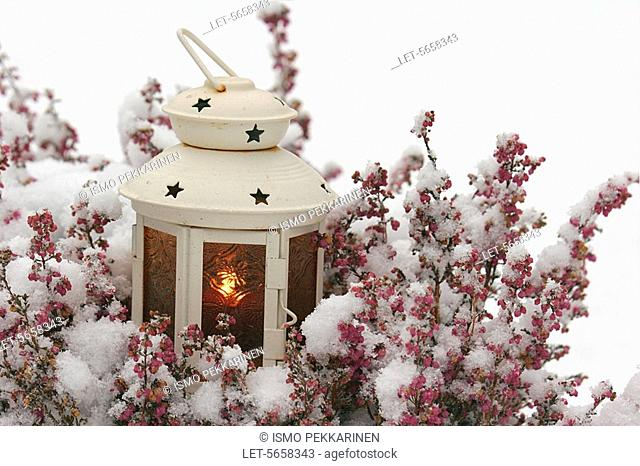 Candle lantern in snow  Finland